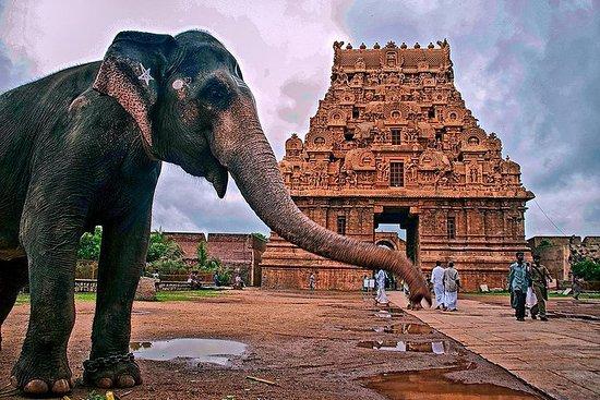 ワンダーツアーでチェンナイから14日間南インド...