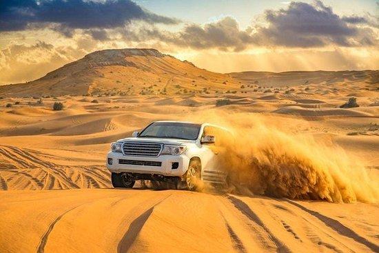 Doha: 4 heures de safari privé dans...
