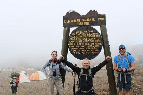 8 Days Mountain Kilimanjaro Lemosho...