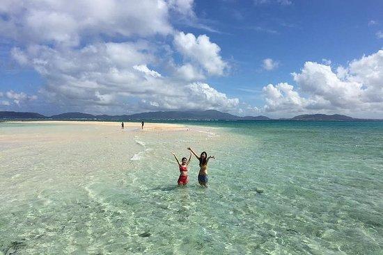 Tour di mezza giornata per l'isola fantasma e lo snorkeling da