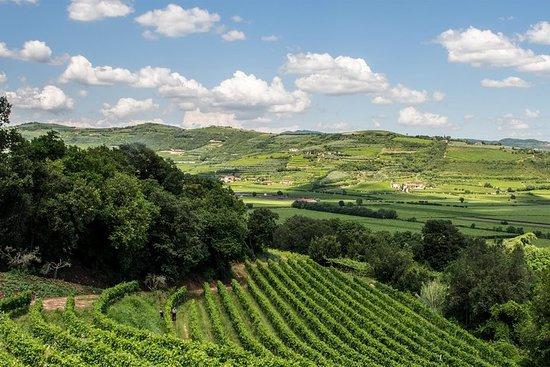 Amarone vin tur - besøk Verona. Fra Venezia