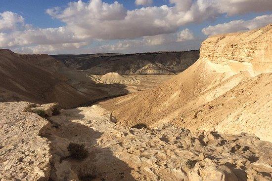 Excursion d'une journée privée dans le désert du Negev depuis Tel...