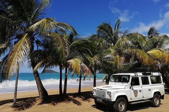 Insel-Safari-Abenteuer