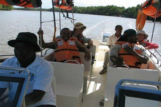 萨达尼国家公园一日游 - 坦桑尼亚坦噶市