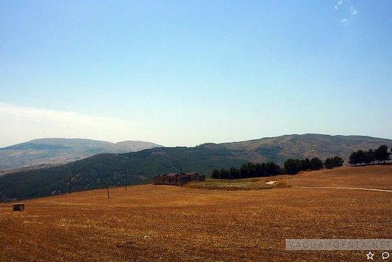 Borgo Littorio et Bosco Ficuzza