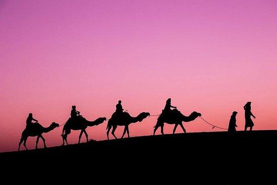 Merzouga Desert Tour 3 jours de...