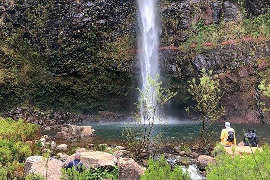 Excursão Wind Pond & Waterfalls...