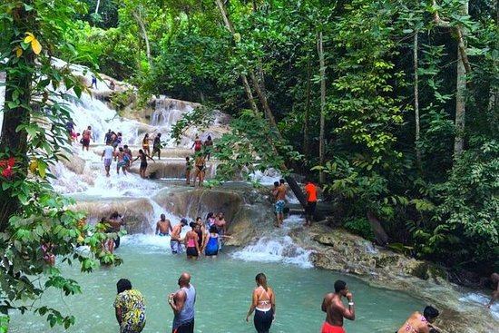 Dunns River Falls and Mystic Mountain...