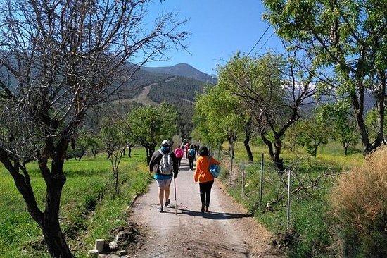 Sierra de Aracena: Grotte des Merveilles, randonnée et pique-nique...