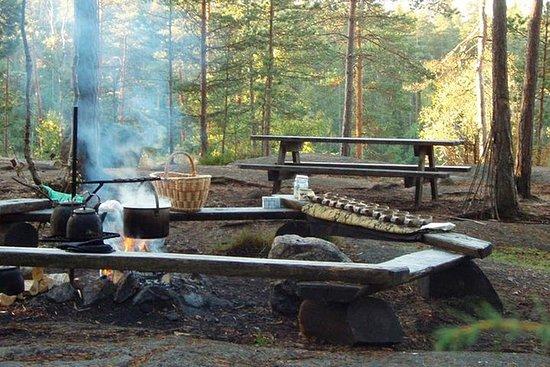 ヘルシンキ国立公園とトナカイ農場でのプライベートガイド付きVIP車による訪問