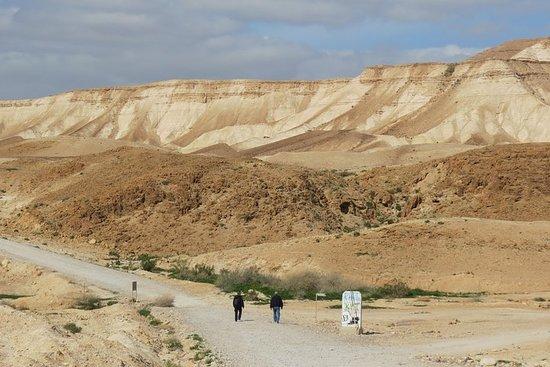 The Negev desert, Dead Sea area & Judean desert - Tour 19
