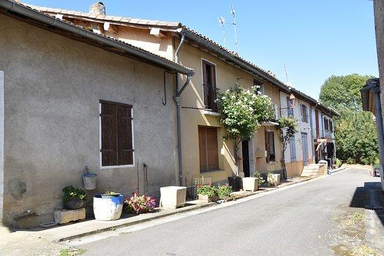 Tarn-et-Garonne, ฝรั่งเศส: GARIES (82-Tarn et Garonne) La DREB s'est baladé le 20 septembre et apprécié le calme de cette campagne de la Lomagne. Voir plus de renseignements sur le blog au lien suivant http://dreb.eklablog.com/garies-gallery180772