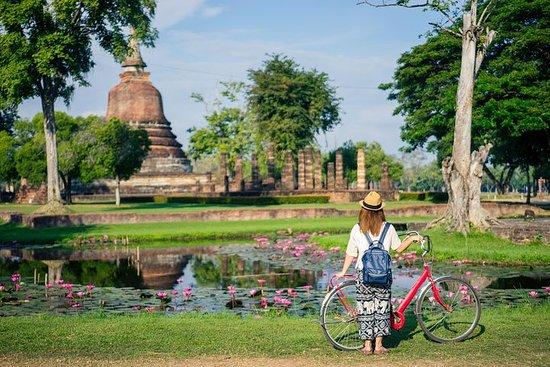 Ayutthaya & Sommerpalastadtour