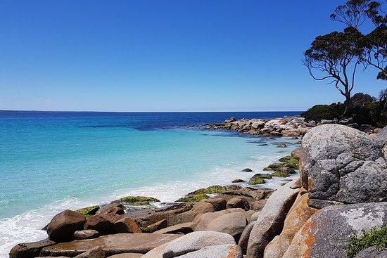 Tasmanie 4 jours côte est + Launceston