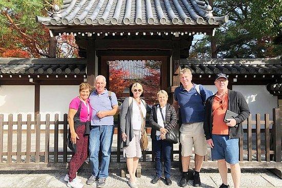 Visite à pied de Fukuoka - Visite privée avec un guide local agréé