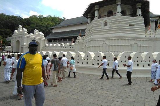 Privat all-inclusive dagstur Kandy...