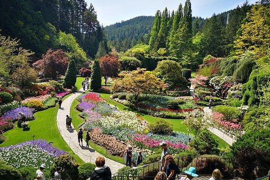 您的布查特花园乡村城市亮点私人之旅