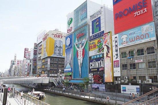 特许车辆私人大阪定制全日游