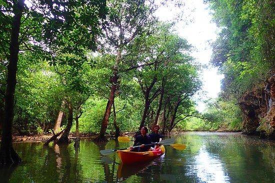 SUP/Canoe tour at Mangrove Forest+Snorkeling tour at Ishigaki-Blue...