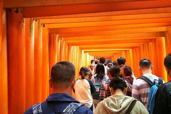 京都步行和品尝抹茶,清酒一日游