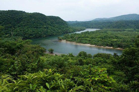 Iriomote Island e Yubu Island Adventure Tour da Ishigaki