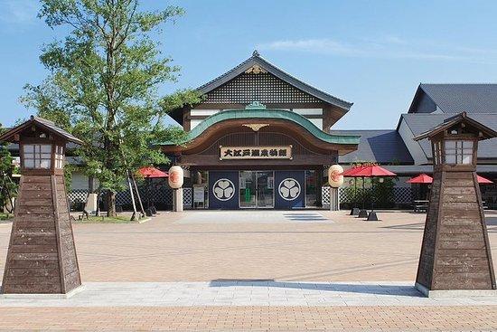 Boleto de entrada a Tokio Ooedo Onsen...