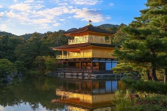 Bus de Kyoto et Nara 1 jour
