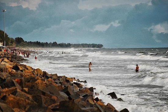 Kerala Sea Food Trail: An Excursion To Cherai Beach