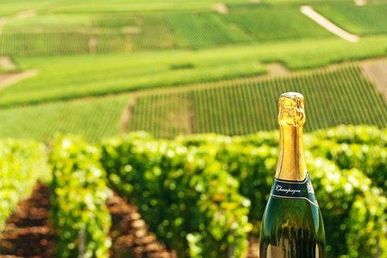 来自巴黎的香槟之旅,在Nicolas Feuillatte著名地窖品尝