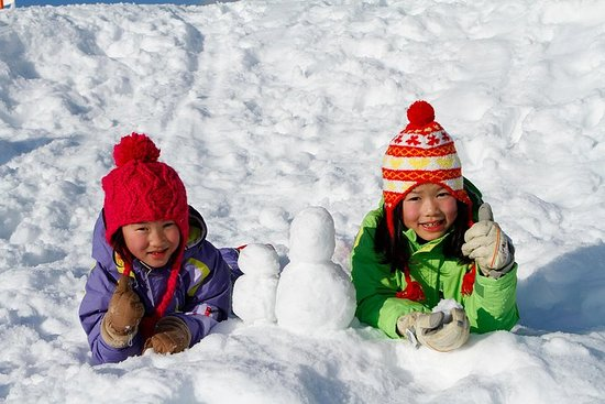 Tambara Ski Park, Strawberry Picking & Buffet Lunch