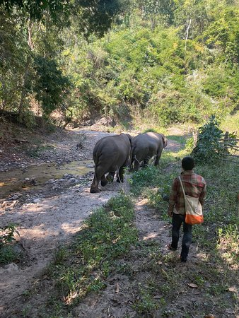 Amazing eco-tourism experience for a family