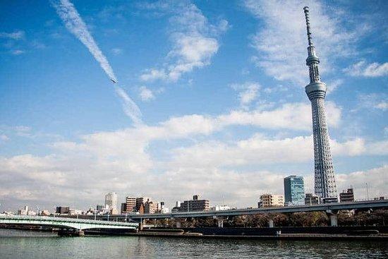 東京観光のための日帰りチャーターツアー