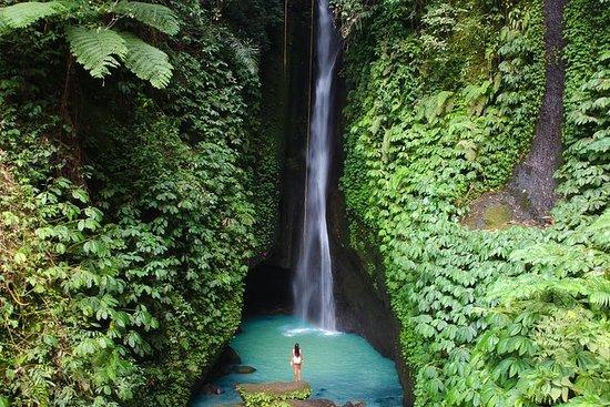 Melhor de North Bali Tour: Cachoeira...