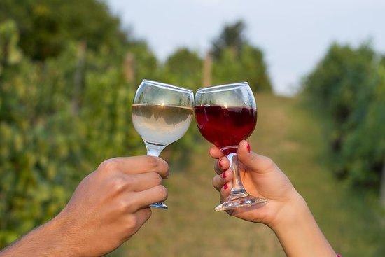 私人葡萄酒之旅 - 參觀兩個小酒廠
