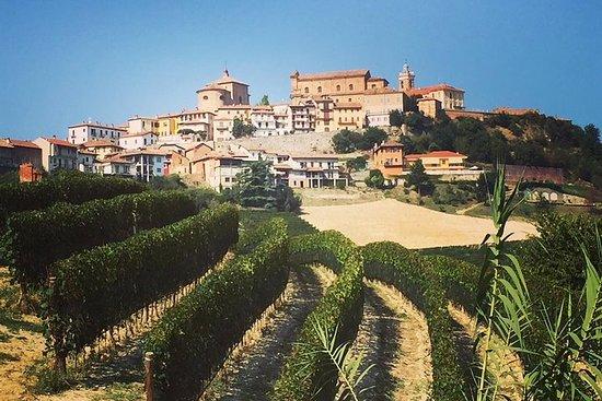 Trøffeljagt og Barolo-vinsmagning
