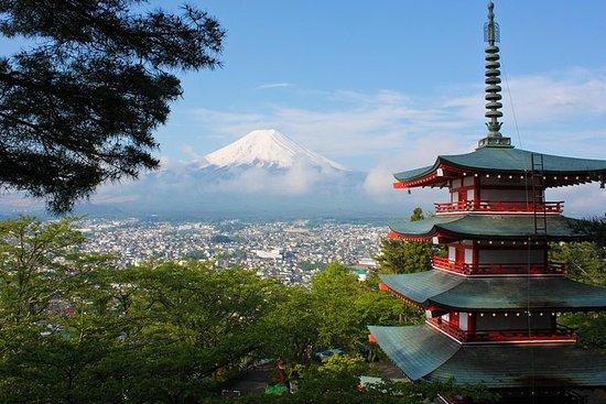 1 dag Privat Mt Fuji Tour (charter...