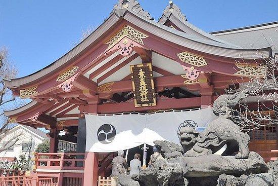 Privat tur - En spasertur rundt Edo Post Station Town i Senju