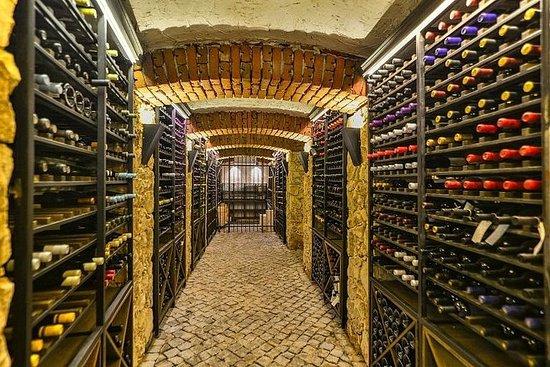Visite de vin et dégustation de vin en...