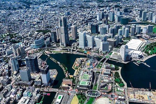 [55分]東京横浜ツアー:東京横浜海岸線ヘリコ...