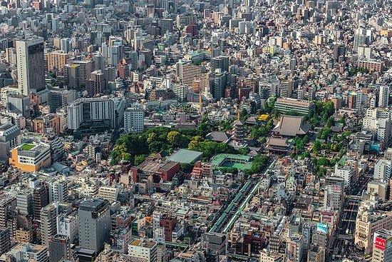 [25分]東京ツアー:浅草上野ヘリコプターツア...