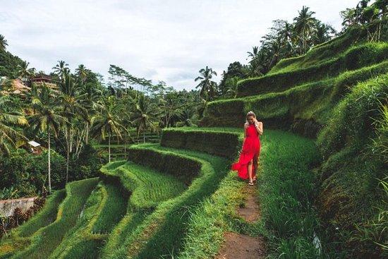 Melhor dia de viagem em Bali