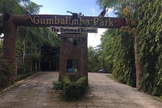 Shore Excursion: Gumbalimba...