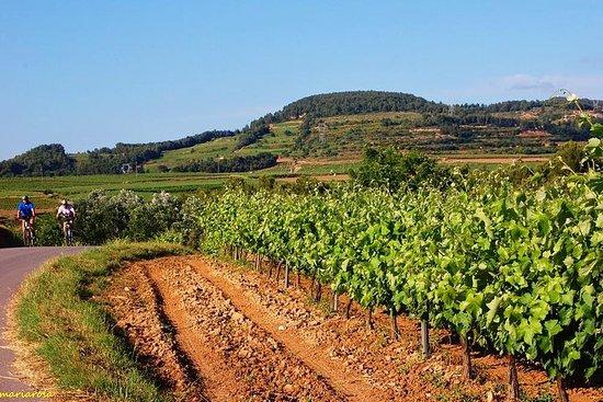 Private Day tour : Wine & Cava cellars in ebike + lunch