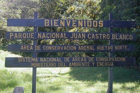 クラウドフォレストハイク@ウォーター国立公園:ジュアンカストロブランコ国立公…