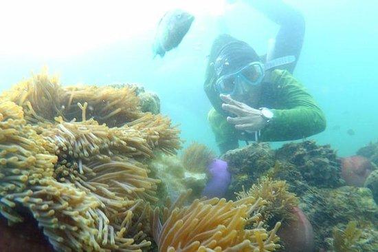 2-dagers Bintan Island-tur med lunsj