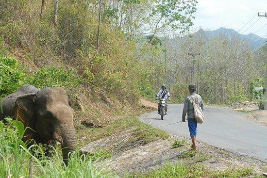Expédition au Vietnam au Laos en Thaïlande (disponible pour les motos...