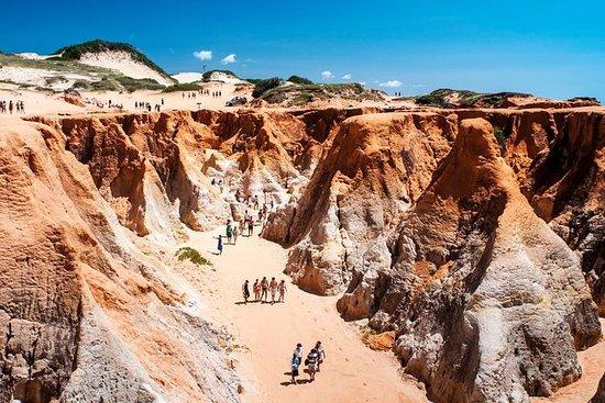 3 playas en 1 día (Morro Branco, Praia das Fontes y Canoa Quebrada)