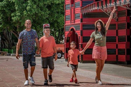 Tour panoramico della città di Ponce City