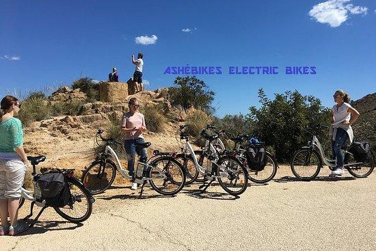 Bicicletas Eléctricas de Alquiler