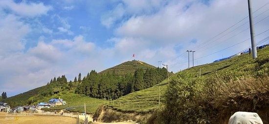 Kanyam, Nepal: This is an upcoming tourist destination located in Ilam, Nepal. One can find mountains full of Tea gardens. Atop one of the hills also located is the Nepalese Flag.